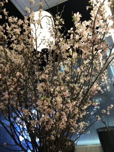 福岡、博多の今日はうってかわって  イベントのご案内