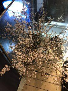 福岡、博多は恵みの雨?