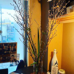 福岡、博多で室内花見 IN かわさと